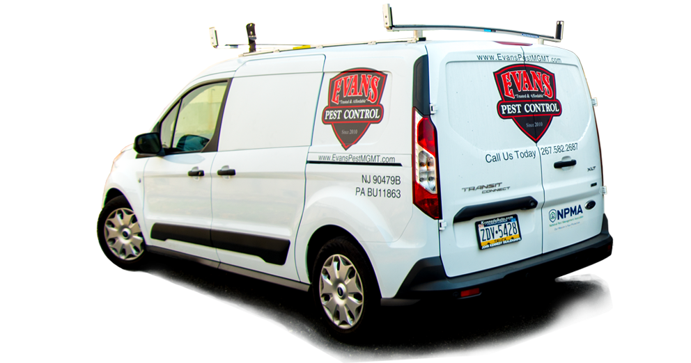 Professional Pest And Bug Extermination Technology